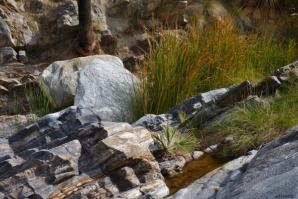 Rock Outcrops in Canyon Oases